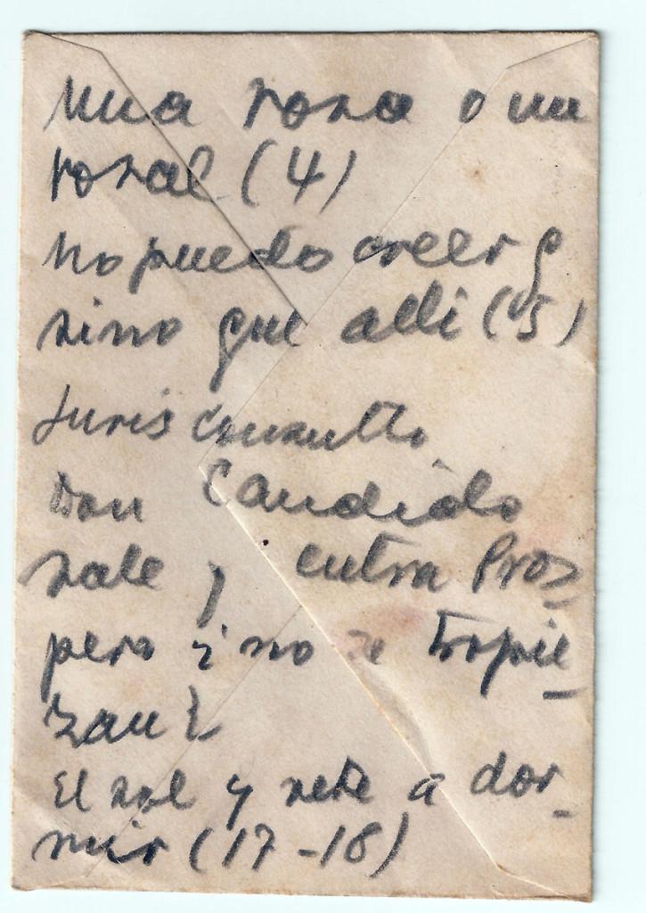 «Una rosa o un rosal». Archivo familiar.