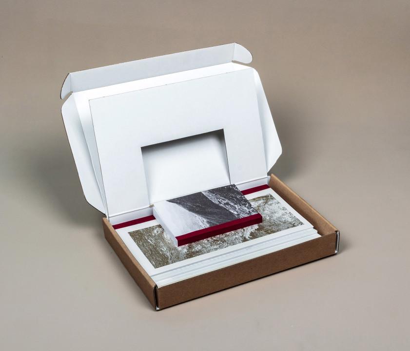 Caja con insertado de cartón para preservación de tapa. Tapa en oro.