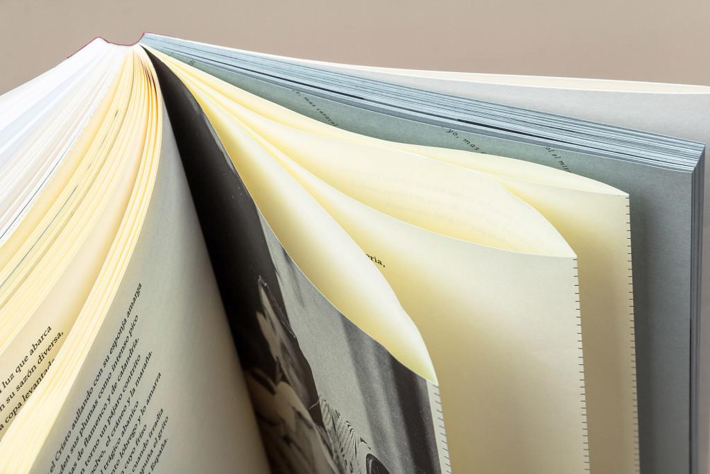 Detalle de op opaque (papel biblia) y galgo (gris canalado prensado a mano con filigrana).
